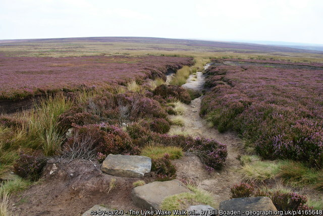 Image depicts heather moorland with a well worn, boulder strewn path running away into the distance